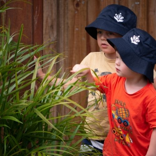 Kids observing a plant - Cannon Hill ELC